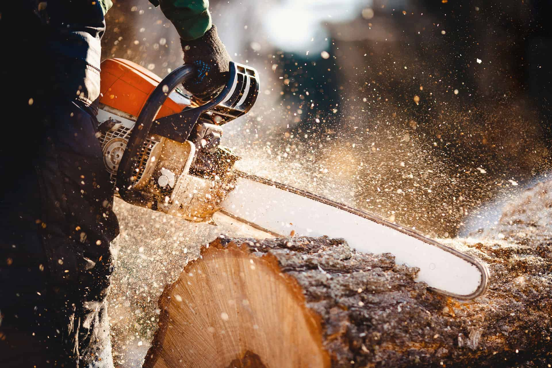 chopping into a log using a chainsaw